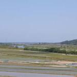 【眺望2】荒川はサクラマス釣りの季節が終わり、鮎釣りの季節を待っています。